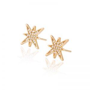 My star earrings-0